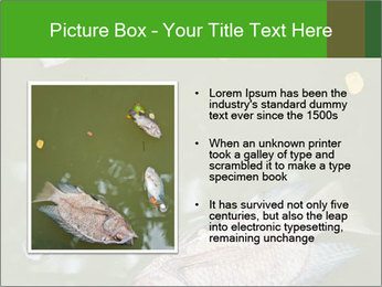 0000074221 PowerPoint Template - Slide 13