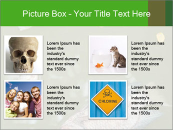 0000074221 PowerPoint Template - Slide 14