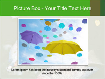 0000074221 PowerPoint Template - Slide 16