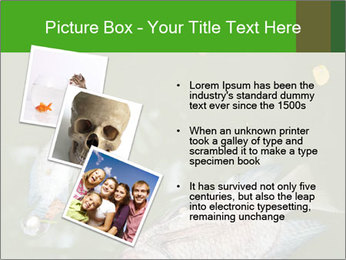 0000074221 PowerPoint Template - Slide 17