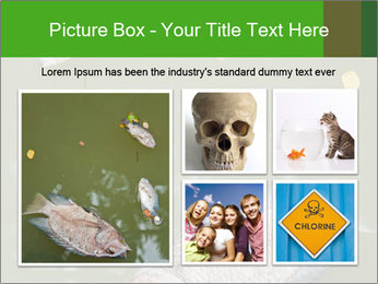 0000074221 PowerPoint Template - Slide 19