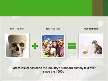 0000074221 PowerPoint Template - Slide 22