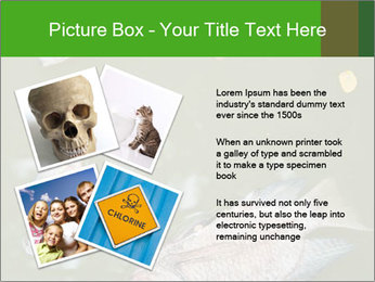 0000074221 PowerPoint Template - Slide 23