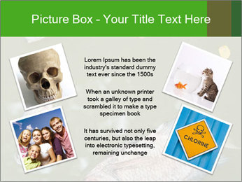 0000074221 PowerPoint Template - Slide 24
