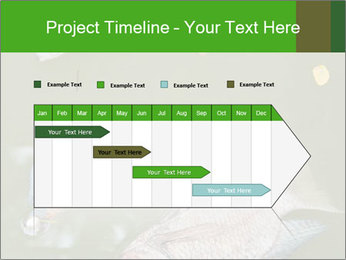0000074221 PowerPoint Template - Slide 25