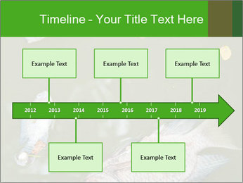 0000074221 PowerPoint Template - Slide 28