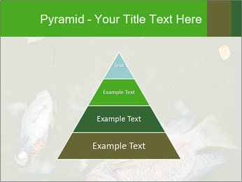 0000074221 PowerPoint Template - Slide 30