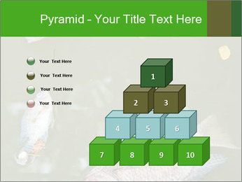 0000074221 PowerPoint Template - Slide 31