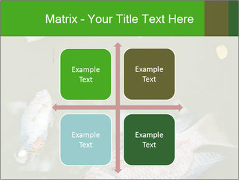 0000074221 PowerPoint Template - Slide 37