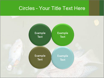 0000074221 PowerPoint Template - Slide 38