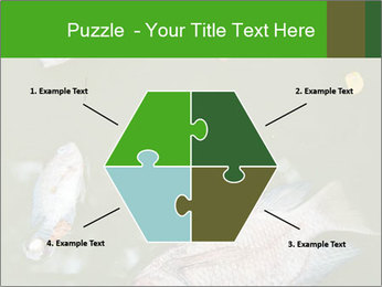 0000074221 PowerPoint Template - Slide 40