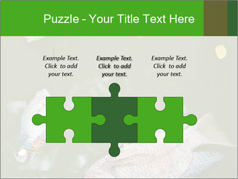 0000074221 PowerPoint Template - Slide 42