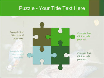 0000074221 PowerPoint Template - Slide 43
