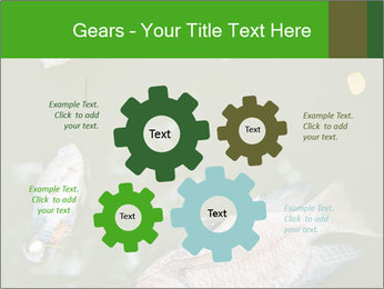 0000074221 PowerPoint Template - Slide 47