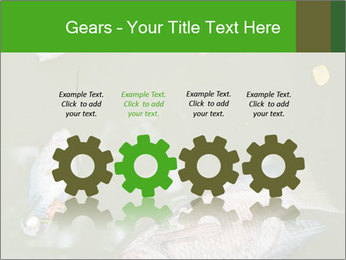 0000074221 PowerPoint Template - Slide 48
