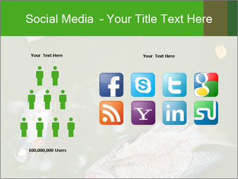 0000074221 PowerPoint Template - Slide 5