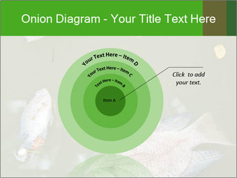 0000074221 PowerPoint Template - Slide 61