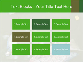 0000074221 PowerPoint Template - Slide 68