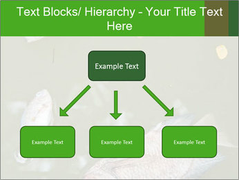 0000074221 PowerPoint Template - Slide 69