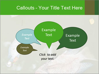 0000074221 PowerPoint Template - Slide 73