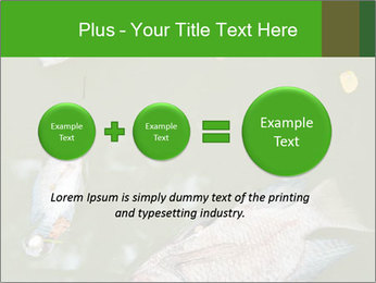 0000074221 PowerPoint Template - Slide 75