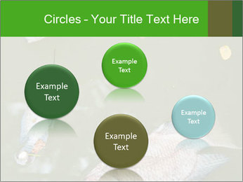 0000074221 PowerPoint Template - Slide 77