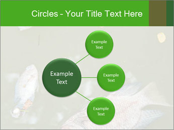 0000074221 PowerPoint Template - Slide 79