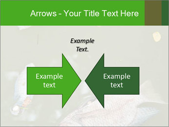0000074221 PowerPoint Template - Slide 90