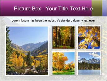 0000074228 PowerPoint Template - Slide 19