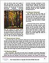 0000074228 Word Template - Page 4
