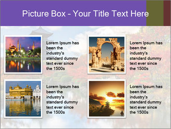0000074230 PowerPoint Templates - Slide 14