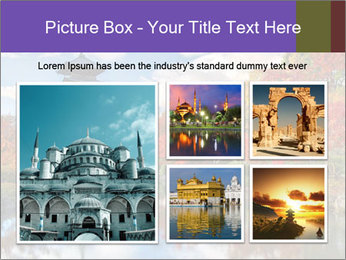 0000074230 PowerPoint Templates - Slide 19