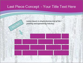 0000074234 PowerPoint Templates - Slide 46