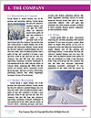 0000074234 Word Template - Page 3