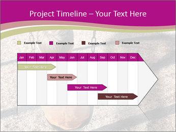 0000074242 PowerPoint Templates - Slide 25