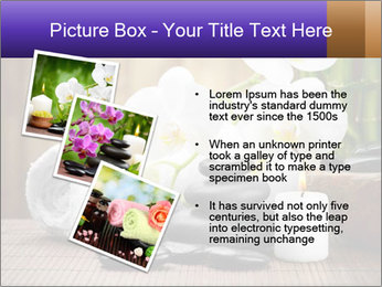 0000074243 PowerPoint Template - Slide 17