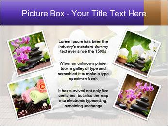 0000074243 PowerPoint Template - Slide 24