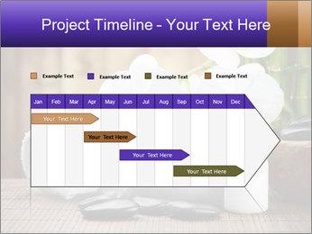 0000074243 PowerPoint Template - Slide 25