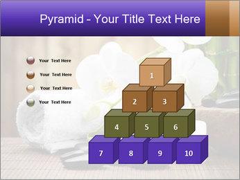 0000074243 PowerPoint Template - Slide 31