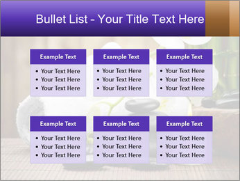 0000074243 PowerPoint Template - Slide 56