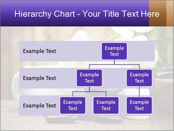 0000074243 PowerPoint Template - Slide 67