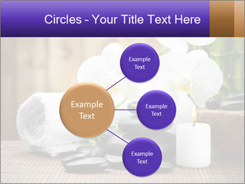 0000074243 PowerPoint Template - Slide 79