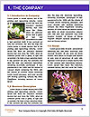 0000074243 Word Template - Page 3