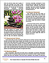 0000074243 Word Template - Page 4