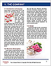 0000074246 Word Template - Page 3