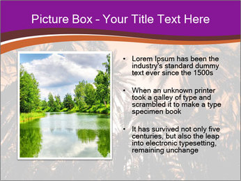 0000074248 PowerPoint Templates - Slide 13