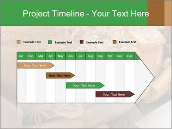 0000074249 PowerPoint Template - Slide 25