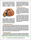 0000074249 Word Templates - Page 4