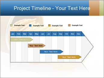 0000074254 PowerPoint Template - Slide 25