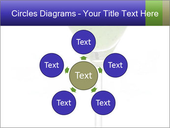 0000074257 PowerPoint Templates - Slide 78